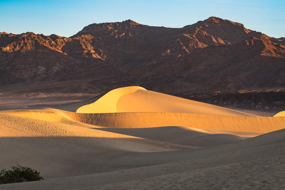 Mesquite Dune Swoop