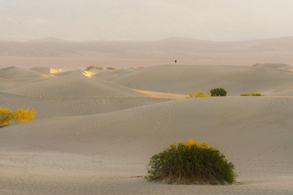 Hiker, Mesquite Dunes