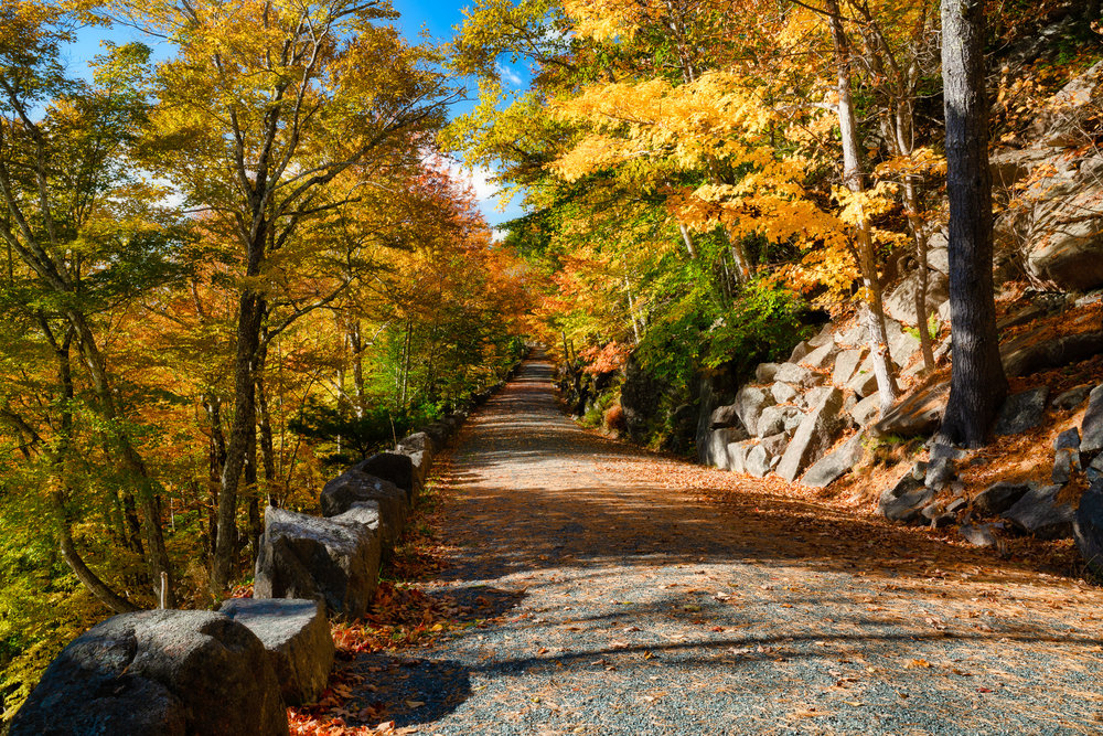 Carriage Roads, Acadia National Park