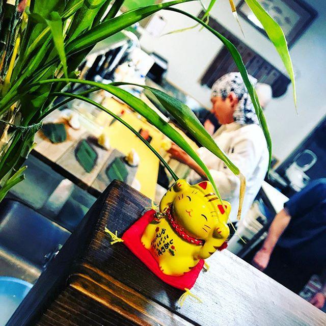 Lucky Cat 🐱 ▫️ ▫️ 📸 @johnpedrointoledo ▫️ ▫️ #downtown419 #downtowntoledo #toledo #ohio #glasscity #igers_toledo #419 #youwilldobetterintoledo #toledoohio #ohioexplored #ohiogram #letsroamohio #inthe419 #igersmidwest #myohioadventure #naturalohio #ig_unitedstates #streets_vision #usaprimeshot #shotzdelight #ig_northamerica #citygrammers #killyourcity #heatercentral