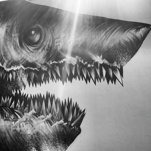 #sharktoof (at Art basel miami)
