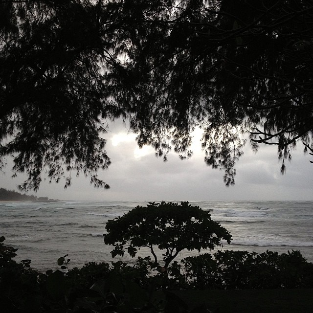 at North Shore, Oahu