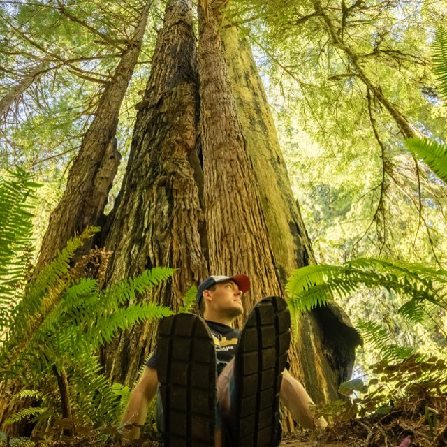 Just lookit the size of those! (They're an 11). #madefromtires #ecofriendly #talltrees photo by @exposurebydjk