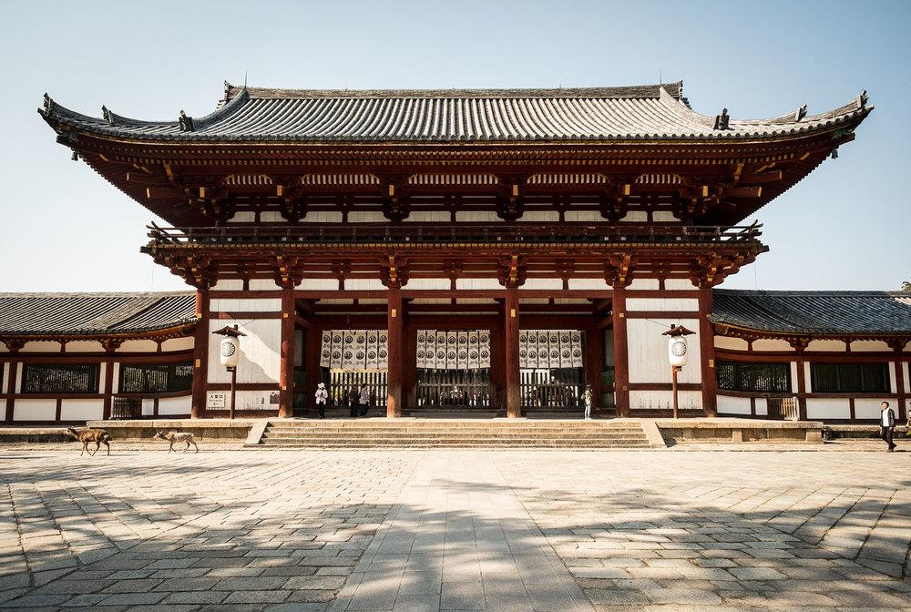 L'entrata del parco del Todaiji