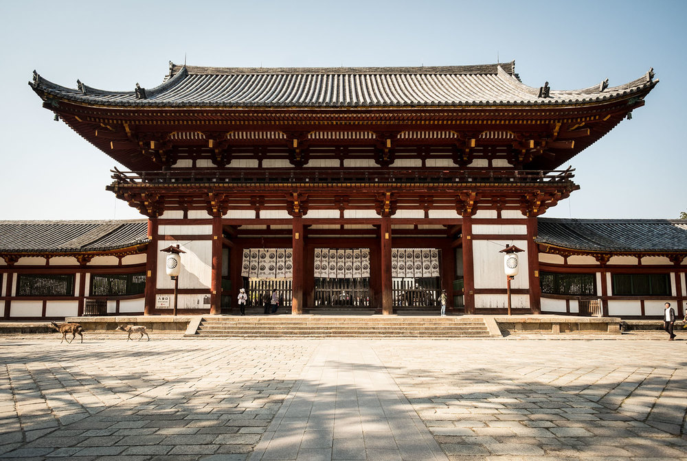 The gate to the TOdaiji