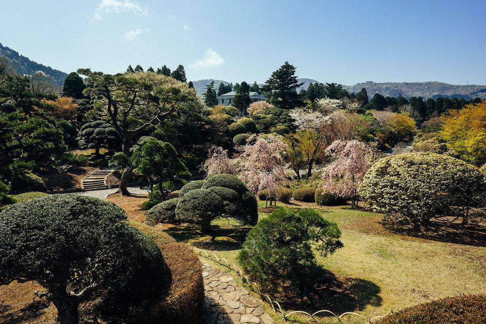 Il parco di Hakone