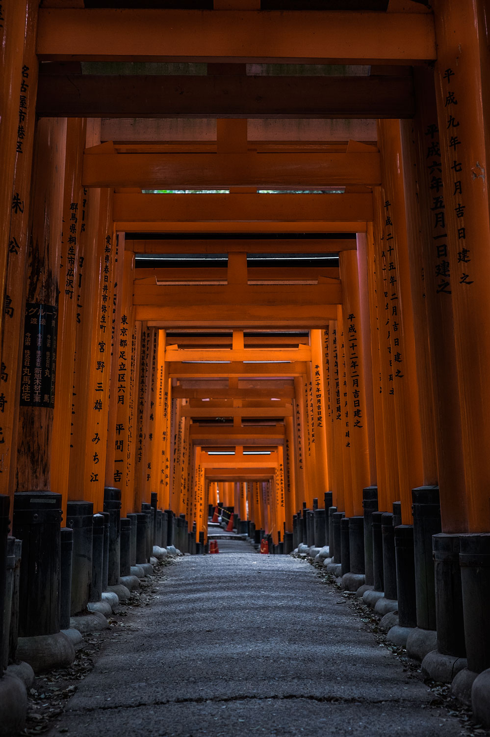 The Torii Path