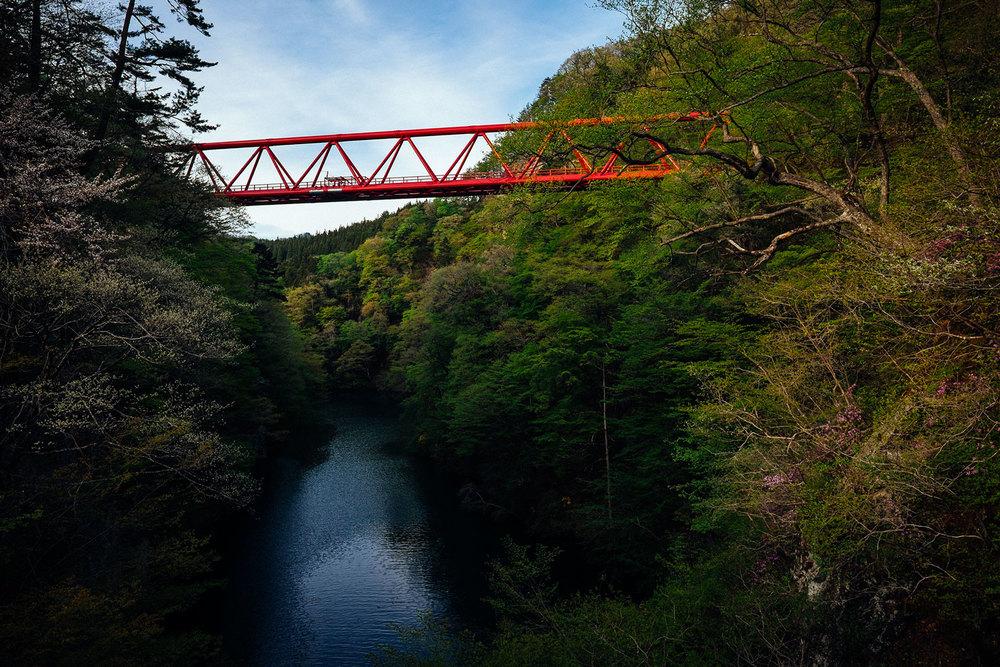 Il ponte da cui ci siamo lanciati.