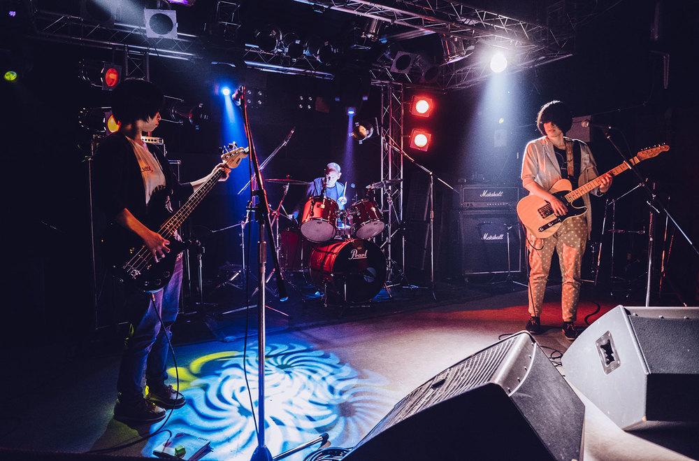Il live degli 葉緑体クラブ