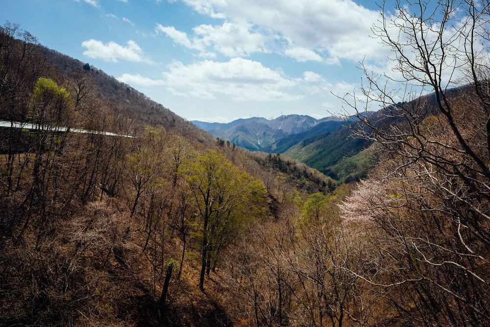 Niigata's mountains.
