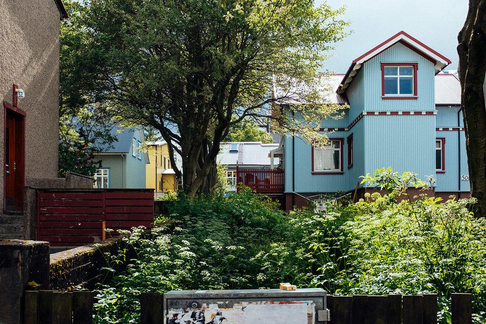 Graziosi angoli verdi tra le graziose case (graziose)