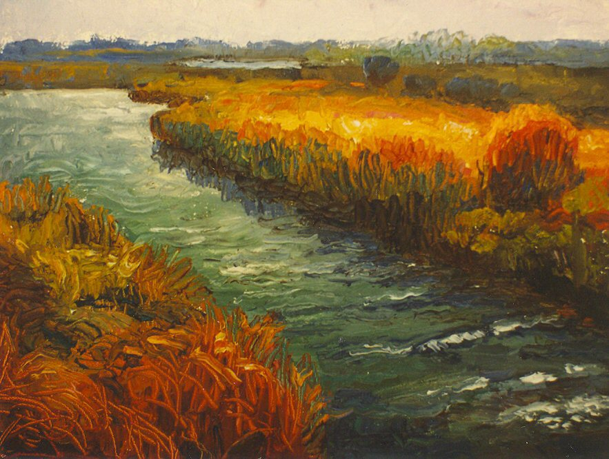 Nantucket Marshes.jpg