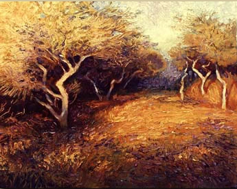 Nantucket Trees.jpg
