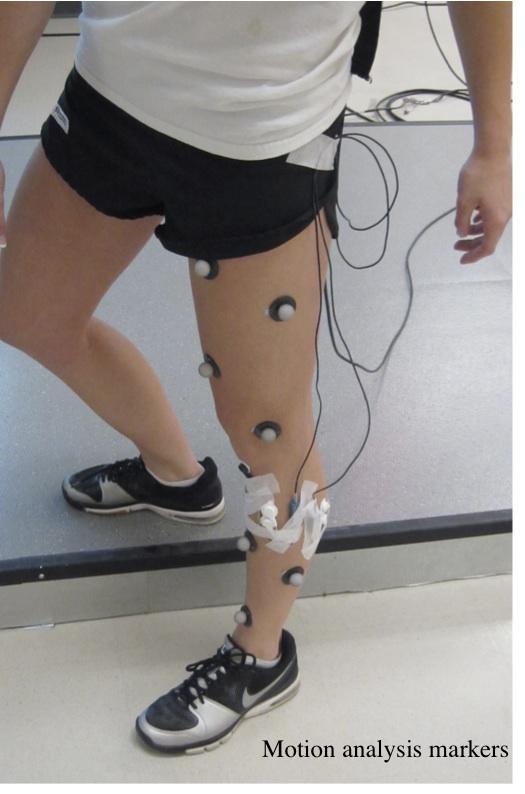 Motion Analysis Leg.jpg