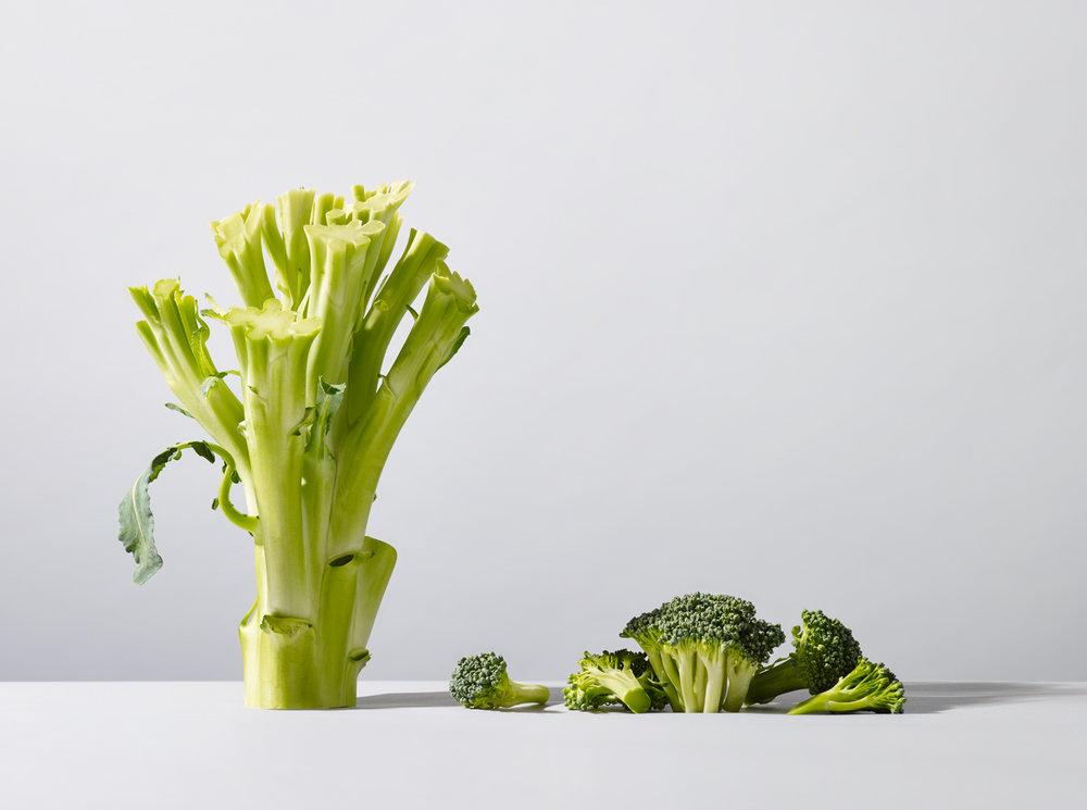 Broccoli 0021.jpg