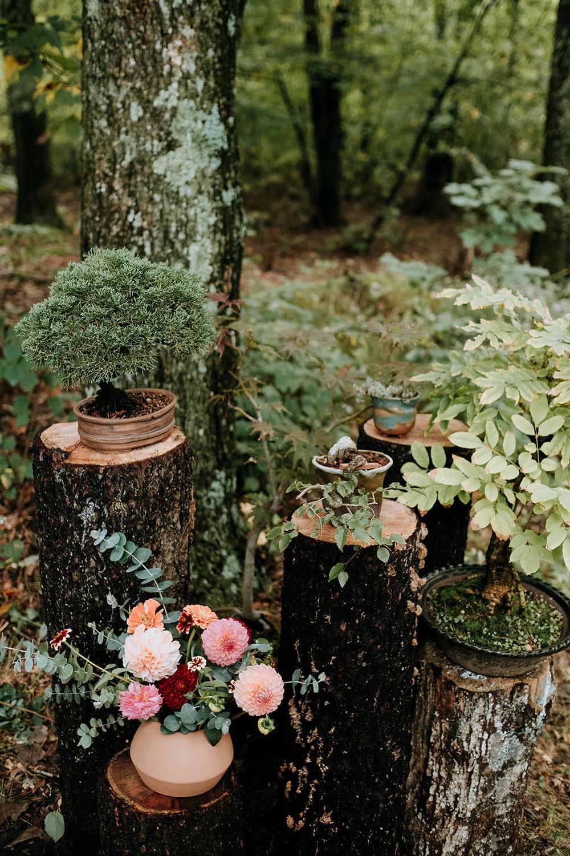 Wedding_Francis_Boucher_Gabby_Joel_Backyard_wedding_2018-186.jpg