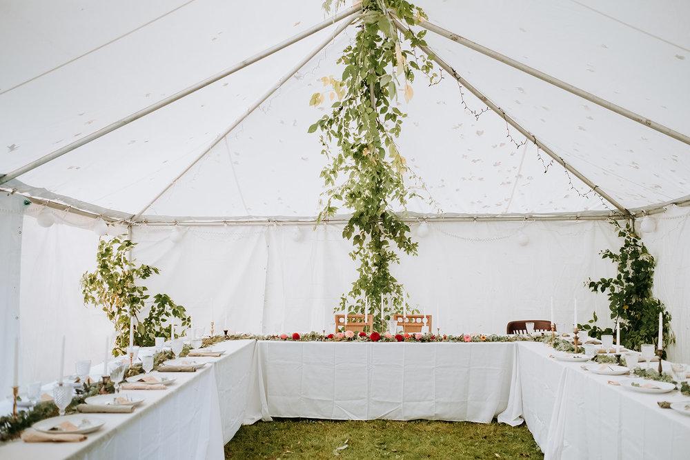 Wedding_Francis_Boucher_Gabby_Joel_Backyard_wedding_2018-373.jpg