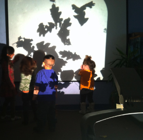 Exploring Fall with the overhead projector