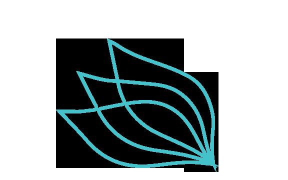 outline-of-leaf.png