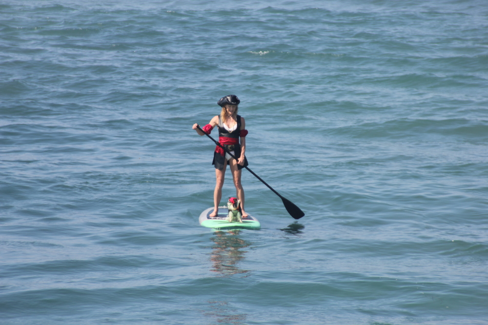 The SUP Connection was a proud sponsor on September 7th, 2014 in the Surf Dog Surf-A-Thon Del Mar Beach Rentals