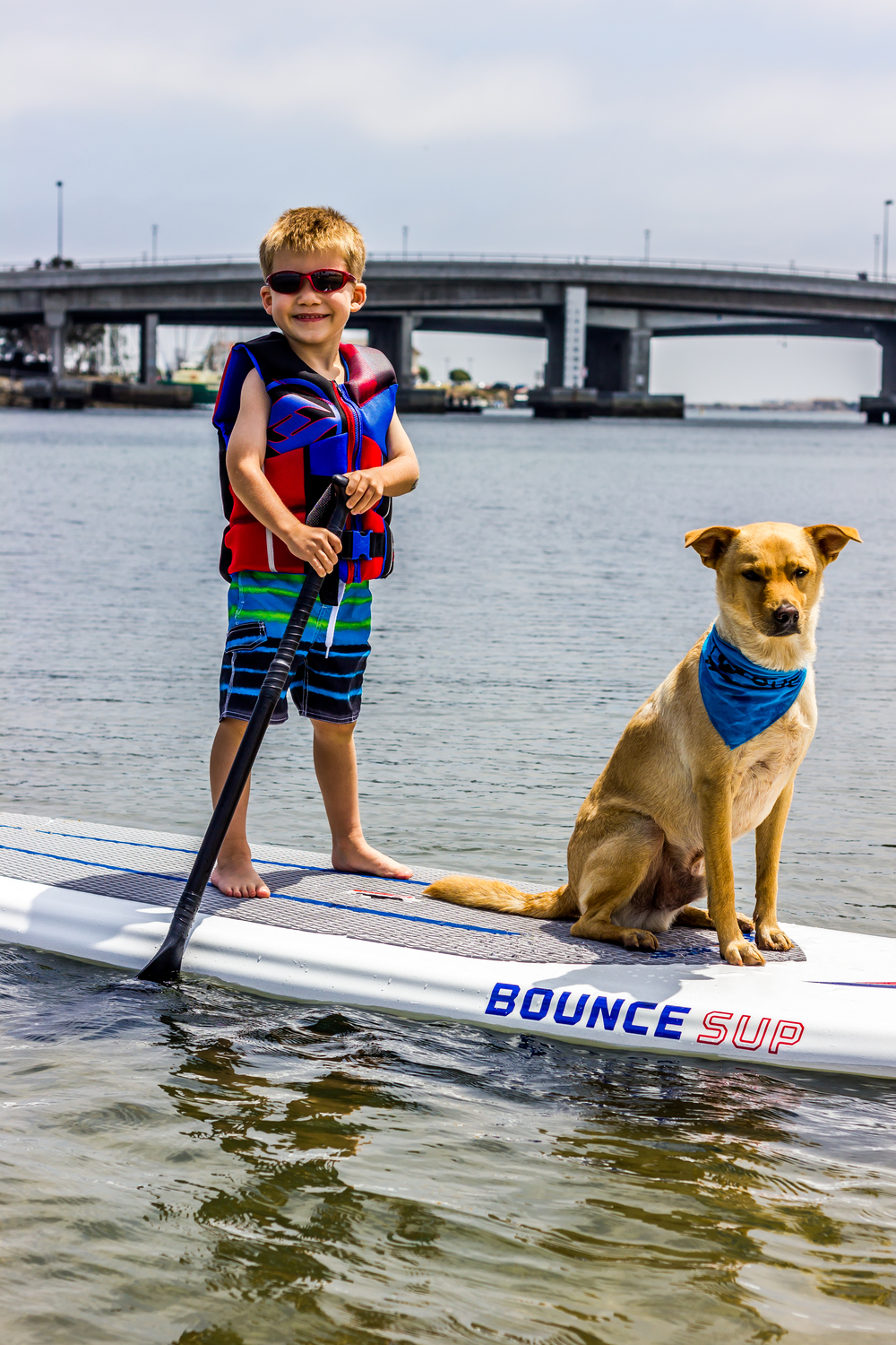 Even kids and dogs enjoy the new Bounce SUP's