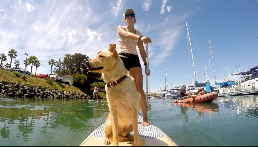 Samantha will assist you with getting you and your dog out on the water