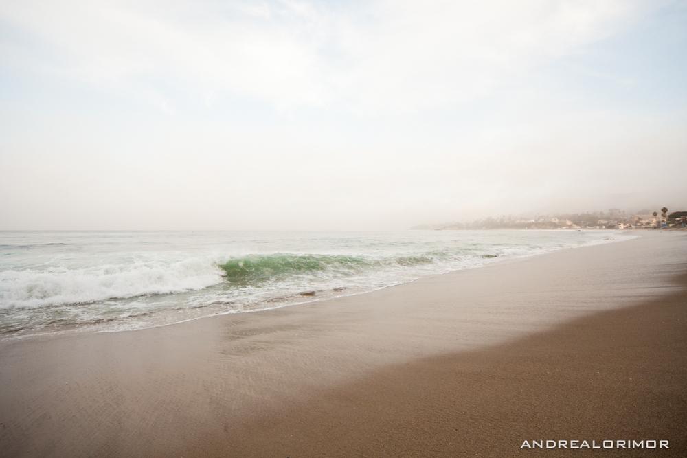 laguna beach-4585