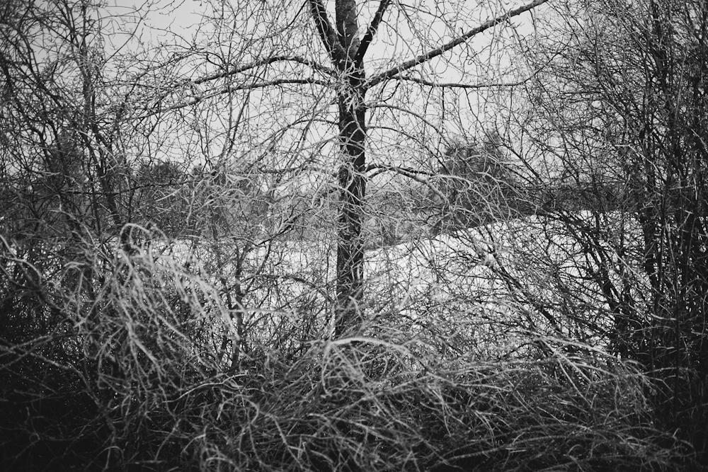 andrea lonas photography-128.jpg