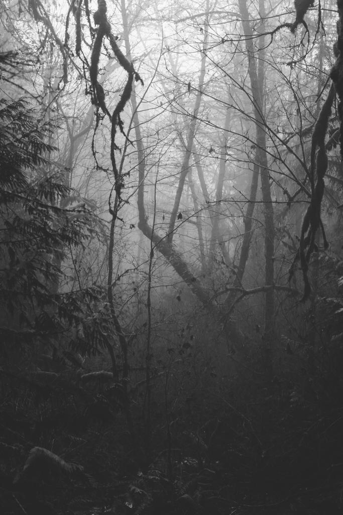 K&M-Andrea Lonas Photography-7800-2.jpg