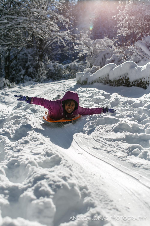 2017 Snowmageddon-Andrea Lonas Photography-8380.jpg