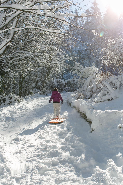 2017 Snowmageddon-Andrea Lonas Photography-8484.jpg