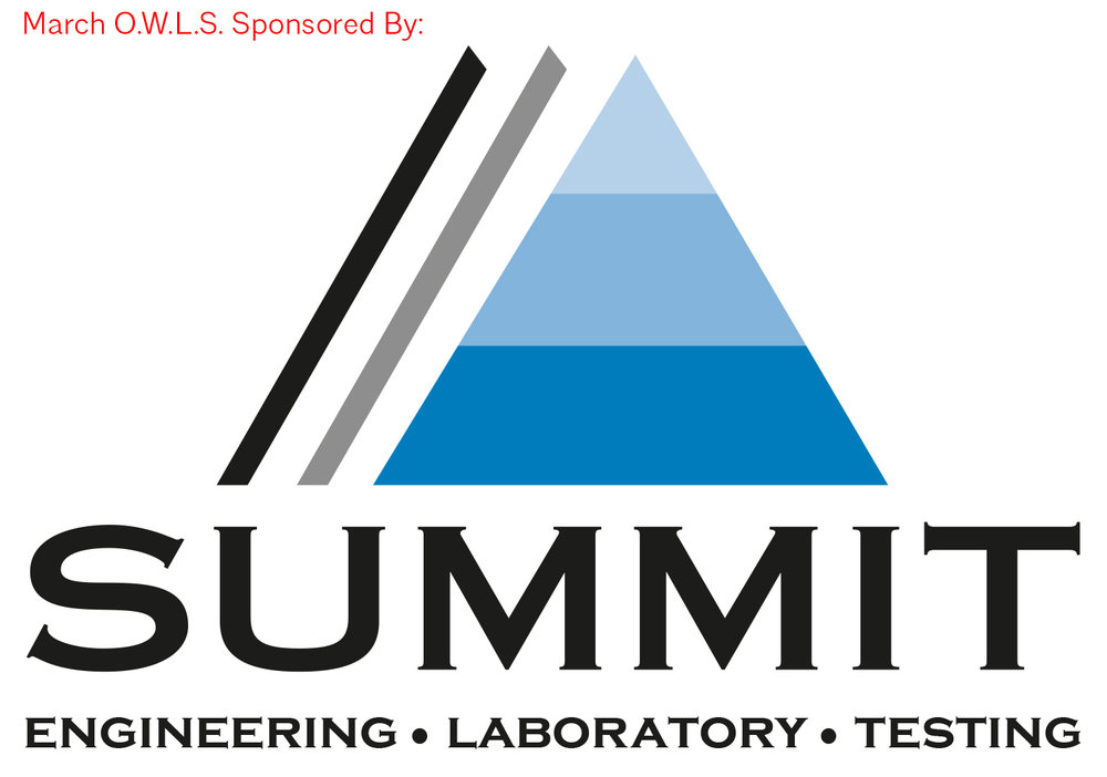 2015 SUMMIT Official Logo.jpg