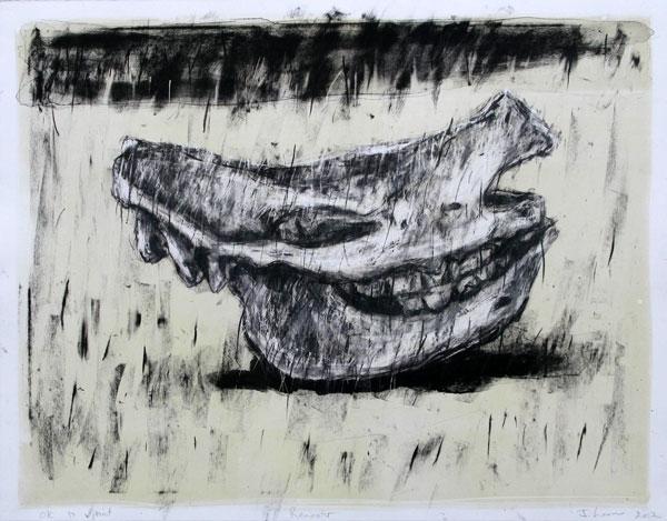 Johann_Louw_lithograph_Renoster-56 x 76cm.jpg