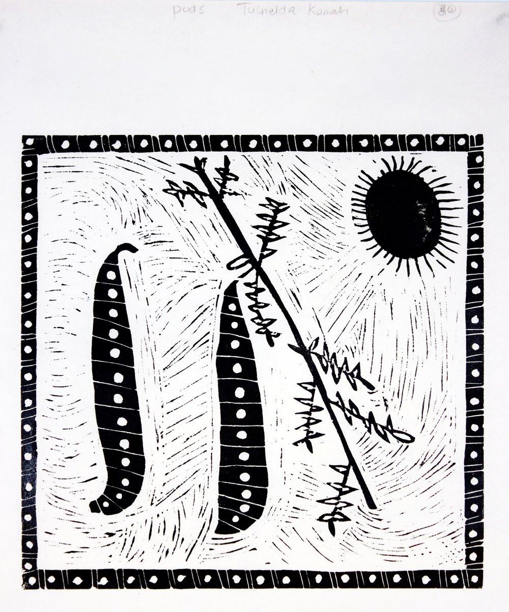 Tusnelda Kamati - Sun, Seed and Pods - 350x435.jpg