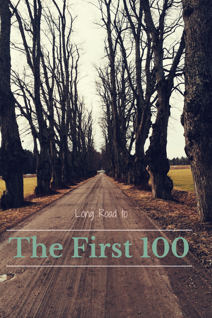The First 100_ShivamCreations