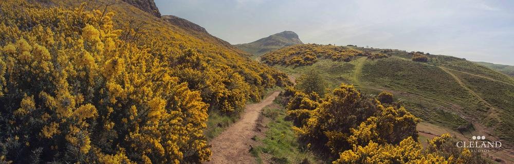 scotland-panorama