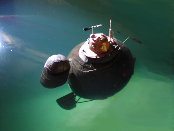 Turtle solo in water 2.jpg