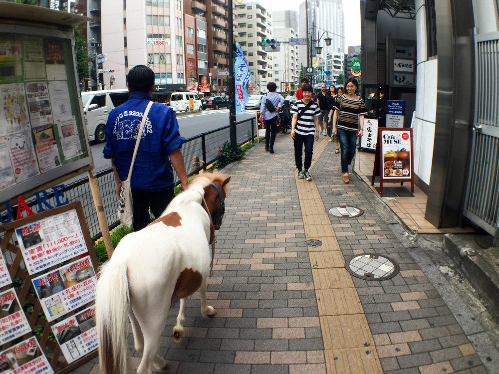 Dashi Tours Tokyo-11.jpg