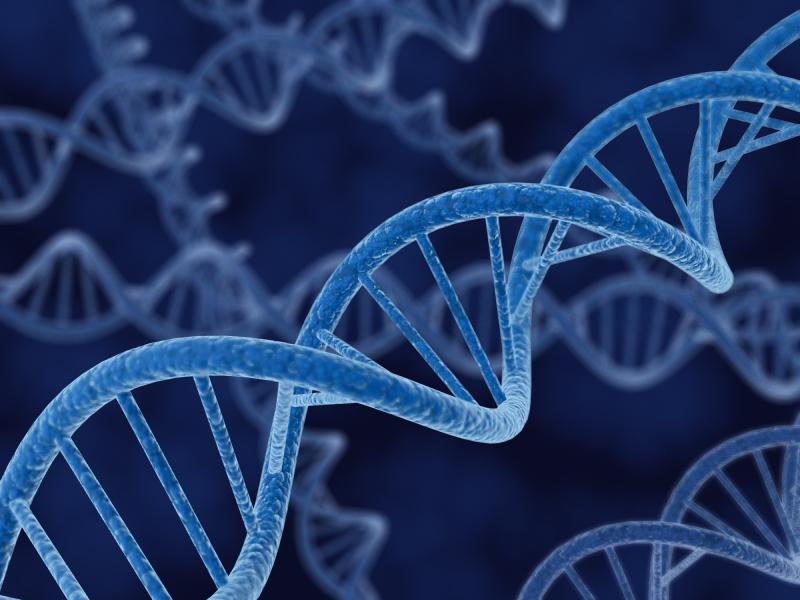 DNA4.jpg