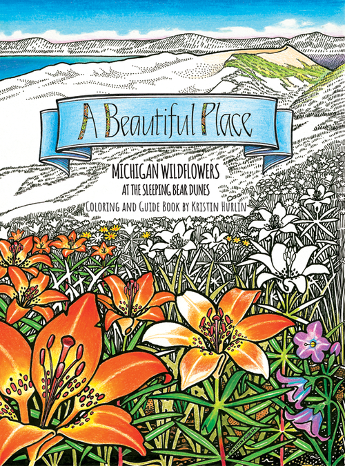 A Beautiful Place Coloring Book