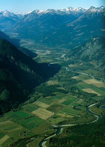 The Pemberton Valley is an important linkage for grizzly bears (moving between the Ryan River and the alpine of the upper Birkenhead).