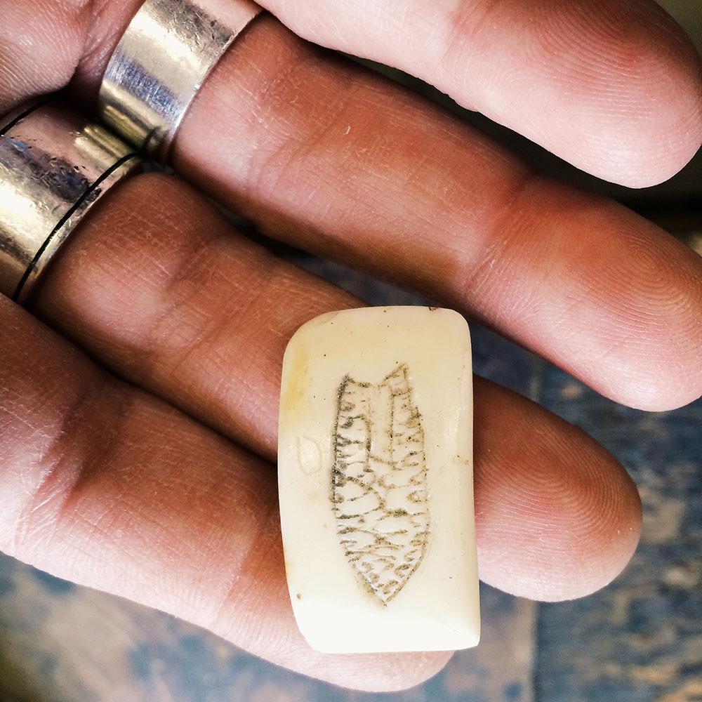 Scrimshaw ivory
