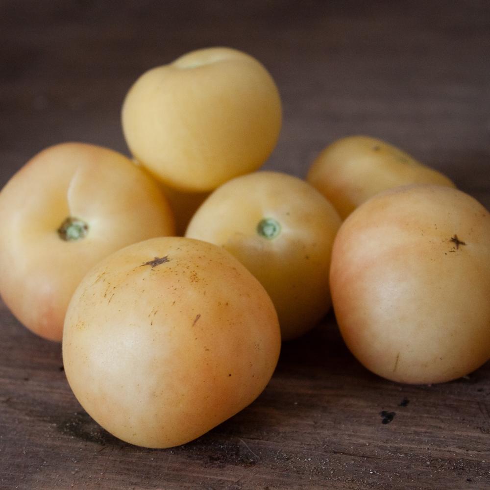 Garden Peach Tomato