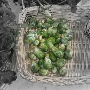 Brussels sprouts highlighted.jpg