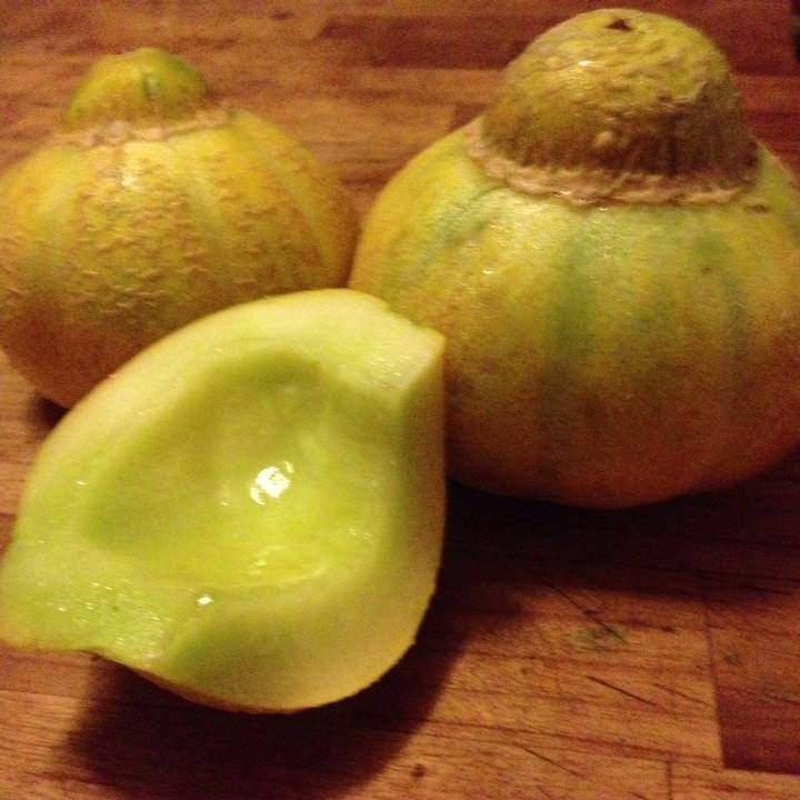 Jenny Lind Melon.jpg