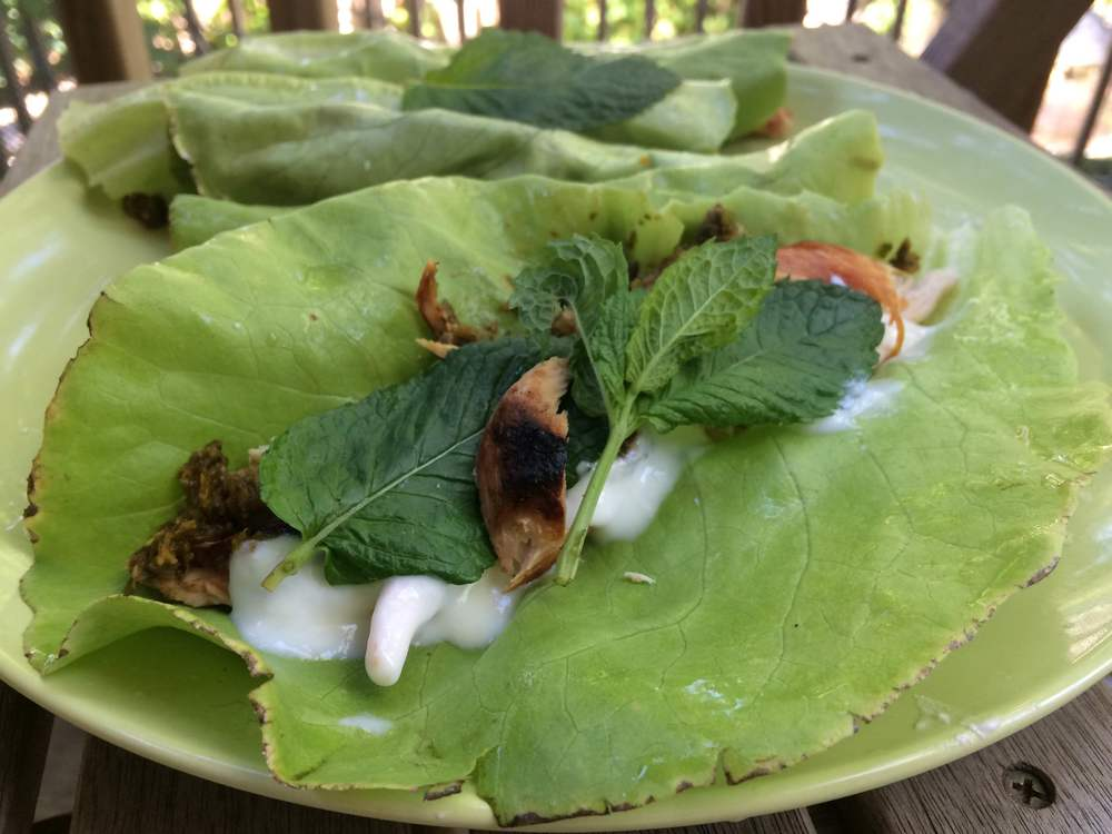 Lettuce wraps with grilled chicken, mustard green harissa, yogurt, and mint