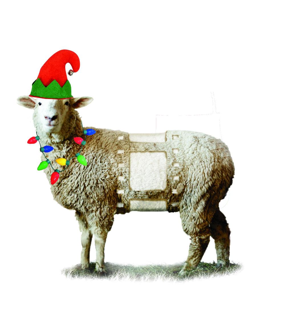 IFF_SHEEP-holiday.jpg