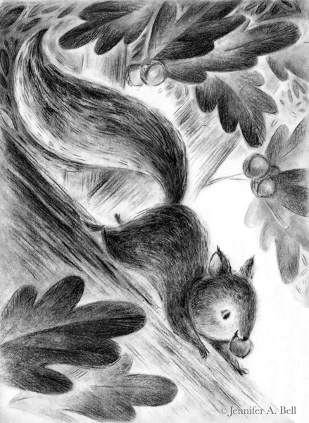 squirrel. Illustration by Jennifer A. Bell