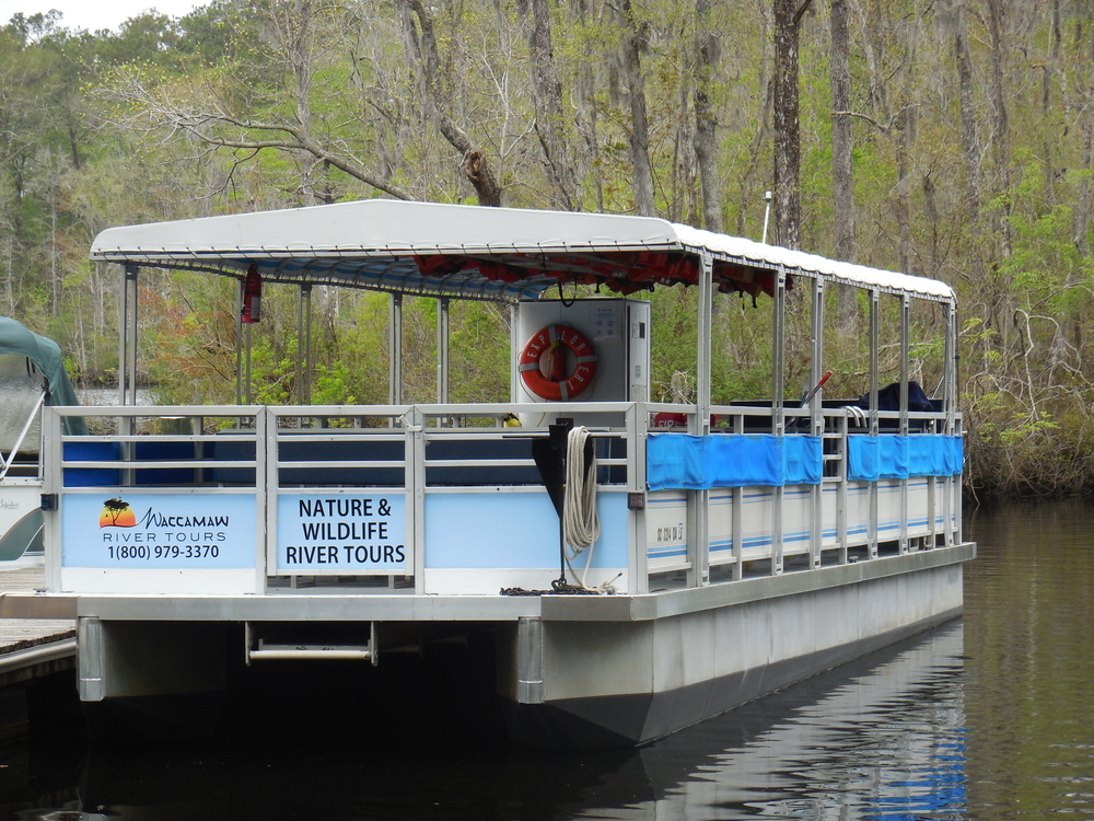 Larger pontoon boat at Waccamaw River Tours used for Nature & Wildlife River Boat Tours.