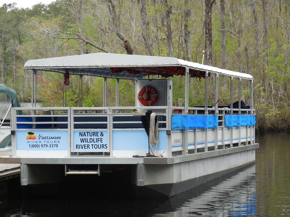 Myrtle Beach Swamp Boat Tour